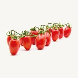 Cherry Tomato Sweet Girl Seeds F1 Hybrid (15 Pcs)