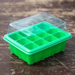 Seed Germination Box (12 Cells)