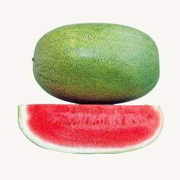Hybrid Watermelon Seeds (হাইব্রিড তরমুজ বীজ)