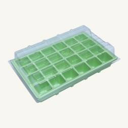24 Cell Germination Box