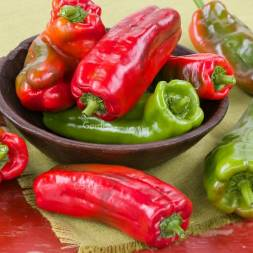 Italian Sweet Pepper Seeds - Nocera Rosso (10 pcs)