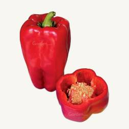 Italian Sweet Pepper ​Giappo® F1 Hybrid Seeds (15 pcs)
