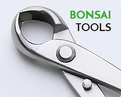 Bonsai Tools
